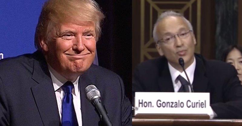 Trump Judge Mexican